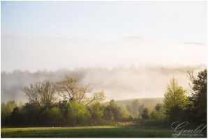 Mist Layered by ThisWomanWanders