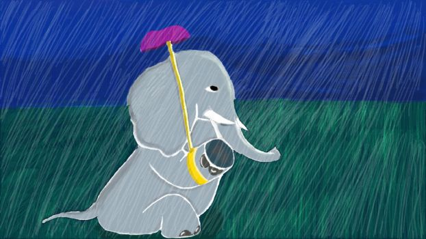 Elephant in the rain by Cointasy