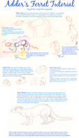How To Draw a Ferret by little-adder