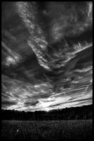 autmun_sunset_bw by ahedrick201
