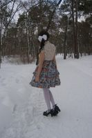 Little rose on a winter day by Black-Ofelia-Stock