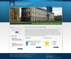 Web 2.0 college website by princepal