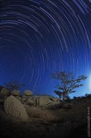 Taif Star Trails by almumen