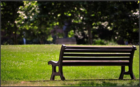 Criss.AC - Bench in the Sun by criss-ac