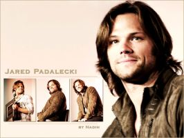 Jared Padalecki by Nadin7Angel