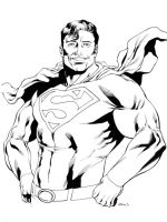 SOTD Superman by RobertAtkins