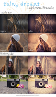 LR preset pack: Shiny Dreams by DorottyaS