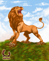 Lion by Macaso