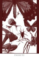 Insects Pack by fractal-DJ