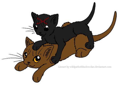 Dustpelt and Redpaw by lucymaggielover