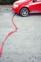 Red leash by cosmin-m