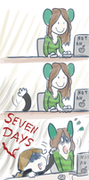 Seven dayyys by Domisea