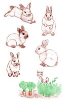 Rabbits by s-traszydlo