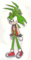 Manic the Hedgehog by KessieLou