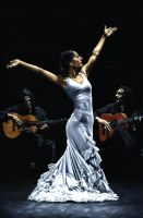 Flamenco Performance Finale by ryoung