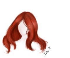 Doodley O' red hair  by MelodicArtist