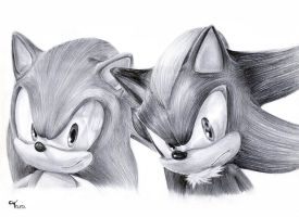 Sonic and Shadow by taratjah