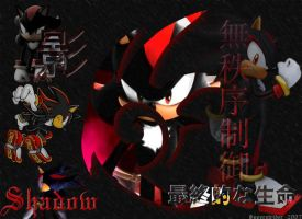 Shadow the Hedgehog Collage by Superstrider