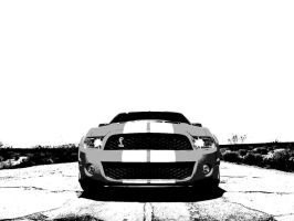 Shelby Mustang GT500 2010 by SilverNecklace