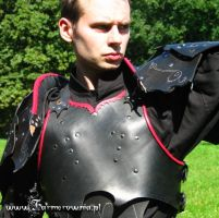 Drow Armor chest and triming by farmerownia