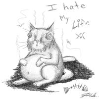 Smelly cat hates life by Malici0us