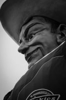 Big Tex by stereometric