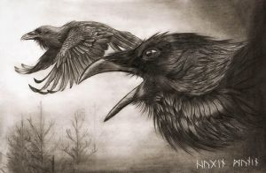 Hugin and Munin by Chickenzaur