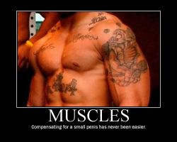 Muscles by Motivations