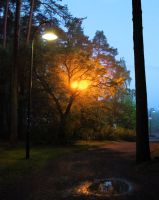 Night time by KariLiimatainen