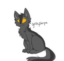 Graystripe by GLlTCHEDPAWS