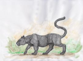 Watercolour crayon Panther test. by MissLucyMedia