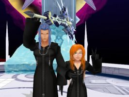 Smile for me, Saix :D by Playstadion