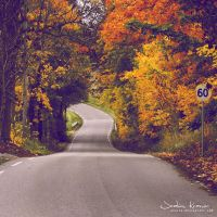 Autumn Road by Healzo