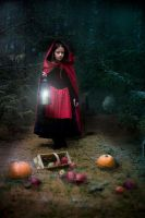 Red Riding Hood by kamillaernandes