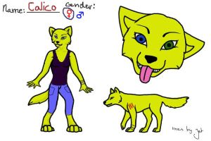 Calico Ref by CalicoWoolfe