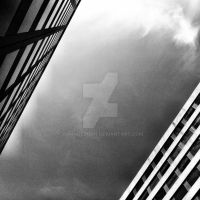 Walkabout 2 (bw) (05.03.12) by armageddon