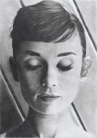 Audrey Hepburn by WeskerGray