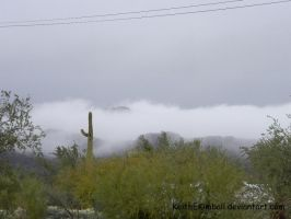 Mist in Tucson by KeithEKimball