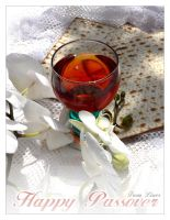 Happy Passover by LiNoR