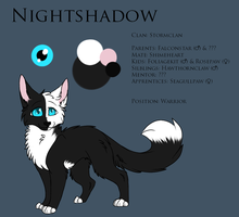 Nightshadow - Ref Sheet by Sorasongz