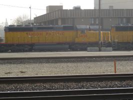 UP SD40-2 Snoot 3456 by BNSF