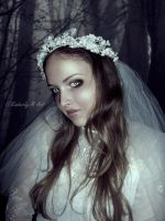 Corpse Bride by Kimberly-M