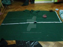 liserg diethel cosplay make process (layer) by Die-Rose
