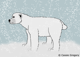 Polar Bear by The-Smile-Giver