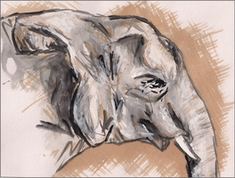 Elephant Sketch Painting by rsdobbs