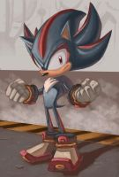 Shadow the Hedgehog by zak29