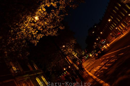 Streets Of London At Night by Saru-Koshiro