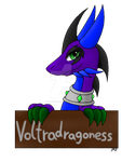 CO-Welcomme name Voltra by DRD-FunTime