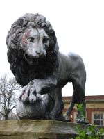Lion Statue by LiQuidFireSTOCK