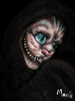Cheshire cat by Edhelmor
